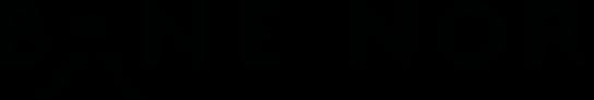 Banenor logo